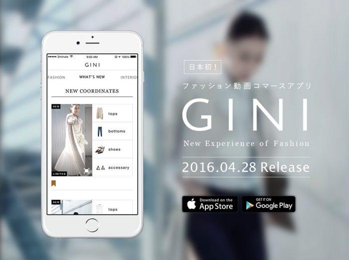 gini1